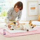セール ここちシャワー S 幅40×奥行60×高さ5cm 介護 介助 お風呂 入浴 犬 猫 ペット 国産 ペピイオリジナル 夏 その1