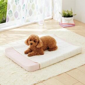 オーガニック防水マットS(42×52cm)【コットン綿100%ベッド介護おもらし小型犬中型犬猫国産日本製】PEPPY(ペピイ)