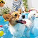 ドッグプール L【水遊び 浴槽 風呂 シャンプー バスタブ 夏 犬 犬用品 犬用 猫 猫用品 猫用 ペットグッズ】(280126)PEPPY(ペピイ)