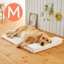 ナチュラルラテックスベッド M犬 ベッド 子犬 シニア 長持ち 国産 安全 ラテックス 高級 快適 柴犬 コーギー ラブラドール ボーダーコリー マルチーズ トイプードル ペピイ PEPPY