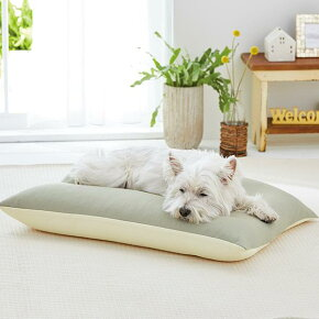 【まるで太ももみたいな寝心地】<もっちりまくらドライ本体>ペット犬ベッド接触冷感リバーシブルパイプビーズ通気性PEPPYペピイ