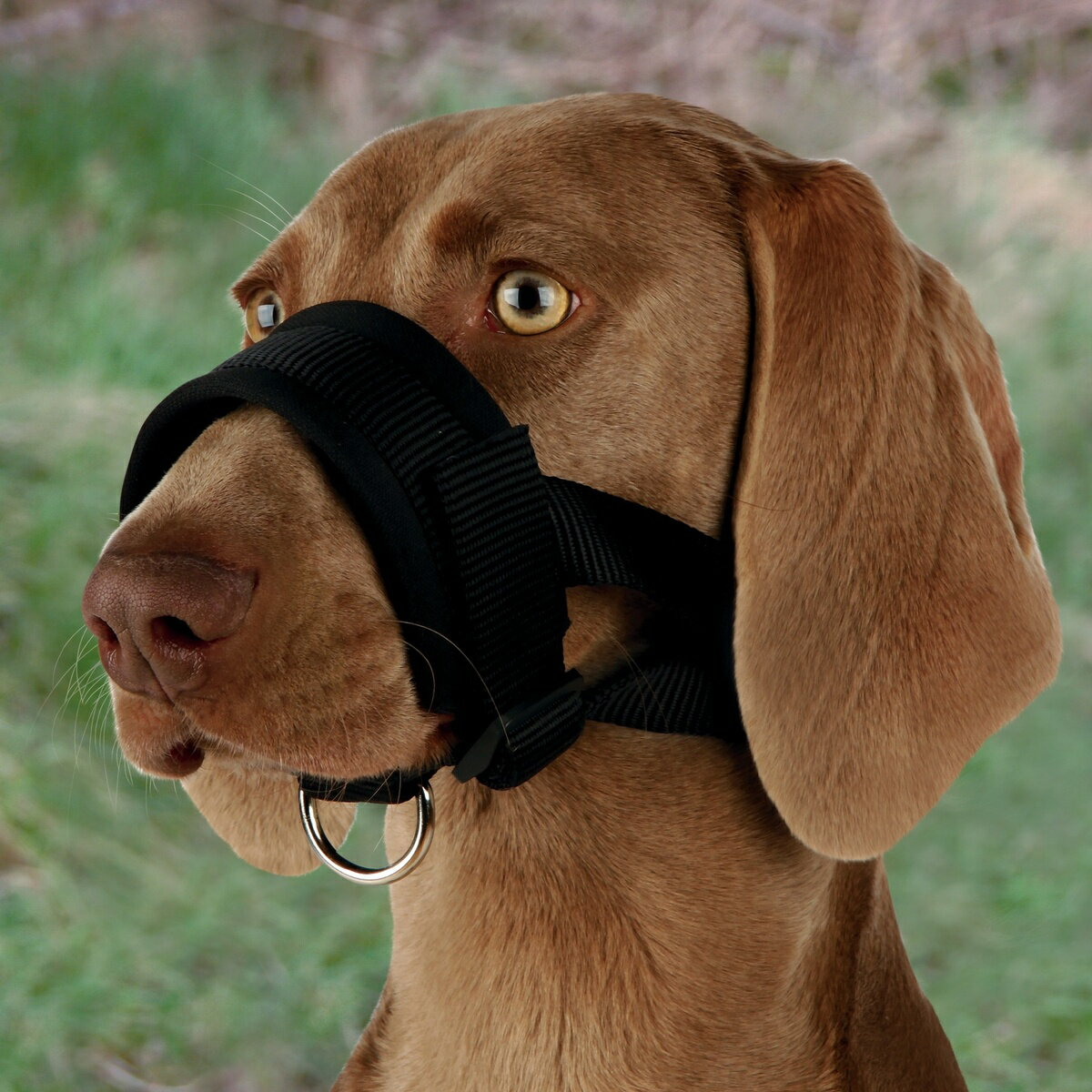 (トリクシー) Trixie ワンちゃん用 ドッグマズルループ 犬用 口輪 ナイロン ペット用 しつけグッズ 【楽天海外直送】