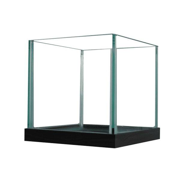 めだか水槽(15X15X14.8cm)スクエア15cm2.4リットルすいそうおしゃれ正方形小さめインテリアメダカアクアリウム水草