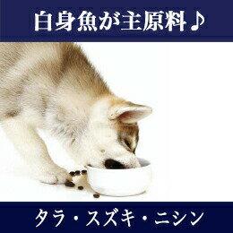 【犬ドッグフード】フィッシュ4犬オーシャンホワイトフィッシュ1.5kg【全年齢対応フード】(穀物不使用無添加無着色グレインフリーグルテンフリー魚DHAEPAオメガ3脂肪酸オメガ6脂肪酸犬用フードプレミアムフード餌エサえさご飯ごはん)