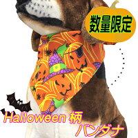 Halloween�������