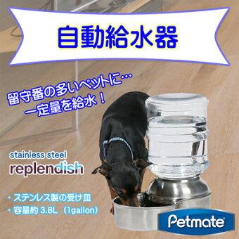 Petmatereplendishステンレス製給水器ペットステンレスウォーター約3.8L