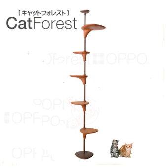 【正規品】OPPOCarForestキャットフォレスト【お取り寄せ商品】