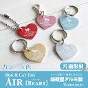 Am-air-aa2-06