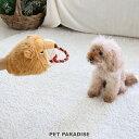 犬 おもちゃ ライオン パペット  おうちで遊ぼう おうち時間 犬 おもちゃ オモチャ ペットのペットトイ 玩具 TOY 小型犬 おもちゃ かわいい おもしろ インスタ映え