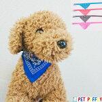 オシャレアクセサリーバンダナ付き首輪犬猫用ブルー/レッド/ブラック/ピンクS/M/L/2L
