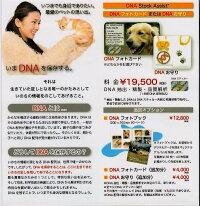 ペットのDNA保存(オモカ)