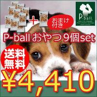��lucky5days������̵�����������ʤ���Ĥ��ɤ�9��+���ޤ�1��!!̵�忧��̵ź�á�P-ball(�ԡ��ܡ���˥ڥåȤ���ġڸ��ѥɥå��ա��ɤ��̥��̤��Ӥ���Ĥ�������̵ź�ä���ĻҸ�Ϸ����