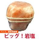 (まとめ)ナチュラハ グレインフリー 犬用 ビーフ&チーズ入り 100g SNH-006【×96セット】【ペット用品・ドッグフード】【日時指定不可】