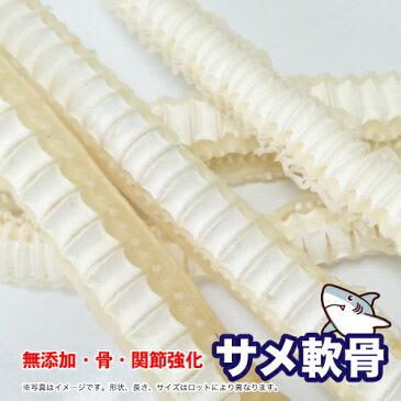 犬 おやつ【無添加】天然 乾燥 サメ軟骨(ヨシキリザメ中骨) 100g 鮫 さめなんこつ グルコサミン コンドロイチン 骨・関節【DBP】