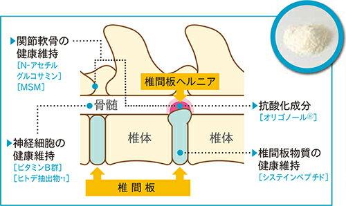 三ビ【関東限定】【代引不可】PEニューロコンプレックス60g