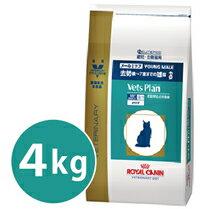 【本州限定】【代引き不可】ロイヤルカナン ベッツプラン猫用 メールケア 4kg