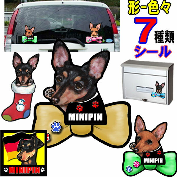 ステッカー, 車用ステッカー  dog in car
