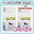 ロイヤルカナン 犬用 満腹感サポート スペシャル 3kg×2袋セット [食事療法食]