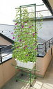 支柱用品■園芸用品■緑のカーテンワゴンW80cm