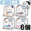 サニーペット FORZA10 (フォルツァ10) アクティウェットシリーズ 成猫用 100g 選べる6個 (リナール 腎臓/DBT 糖の調整/インテスティナル 胃腸/ウリナリー 泌尿器) 送料無料