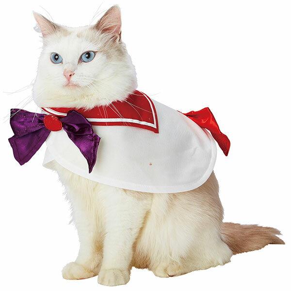 猫用品, キャットウェア  sailor moon !? Petio