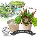 宅配便 ブリキポット ラウンド[Sサイズ] [多肉 フェイクグリーン フェイク多肉植物 イミテーショングリーン 植物 鉢 インテリア] 冬ネイル 2020 福袋 バレンタイン