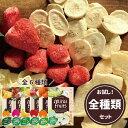 【安心のメーカー直販】フリーズドライフルーツ mirai fruits ミライフルーツ 未来果実 いちご りんご バナナ パイナップル みかん メロン 全種類セット 無添加 砂糖不使用 ベビーフード