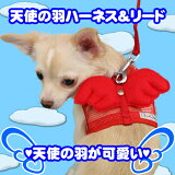 メチャカワイイ☆!天使の羽ハーネス&リードセット【全国送料無料(メール便のみ)】[P2]