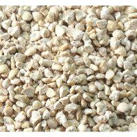 乳酸菌と納豆菌のWパワーでペットの健康をサポート。NS乳酸菌×ドライ納豆ラクトミール80g便利なワンタッチキャップ付。