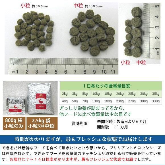 ブリリアントメロウ【10kg=2.5kg×4袋】サーモン 国産 無添加 ドッグフード ビッグウッド 超低温乾燥で素材の栄養を崩さないことを目指しました