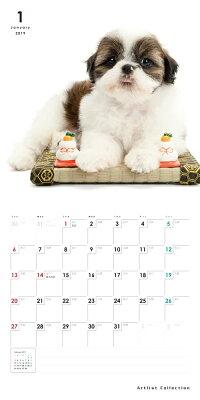 【カード決済メール便送料164円】期間限定THEDOGのアーリスト社製ミニカレンダー2016シーズー