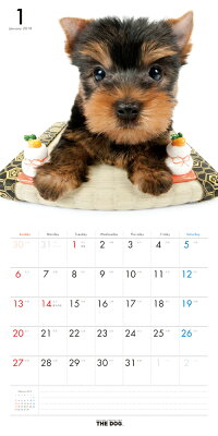 【送料無料】期間限定THEDOGカレンダー2018ヨークシャー・テリア