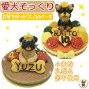 即日発送も ネット注文できる犬用ケーキおすすめ10選 Qpet キューペット