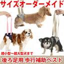 犬用介護ケア・歩行補助に アシストベスト 後ろ足用(超小型犬〜超大型犬...