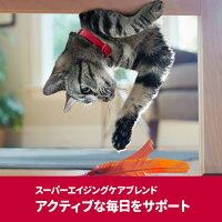 サイエンスダイエットプロ猫【健康ガードアクティブシニア】7歳からずっと1.5kg