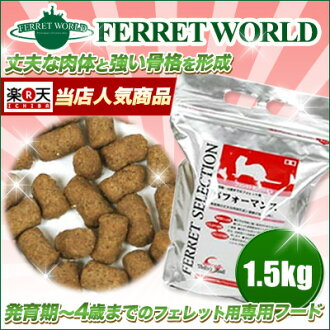 Easter ferret selection performance 1.5 kg
