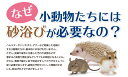 ZERO 脱臭力に特化したハリネズミ用浴び砂(デグー、ジリスその他小動物用) 2kg〔21052549sc〕 3