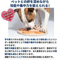 Dog'sFlower