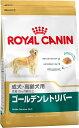 ロイヤルカナン ドッグフード ゴールデンレトリバー3kg成犬 ロイヤルカナン 犬