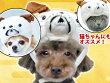 【メール便対応送料164円】ブル被り帽子S【KWA009-S】お正月お祝いパーティー仮装コスプレコスチューム帽子被り物写真撮影撮影小物犬用(いぬ・イヌ)ペットグッズ