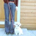 【リード】【小型犬用】ハートメタルリード S その1
