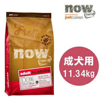 【送料無料】NOWFRESH(ナウフレッシュ) GrainFree レッドミートアダルト 11.34kg【ナウフレッシュ/ドッグフード/ドライフード/穀物不使用(グレインフリー)/ペットフード/DOG FOOD】【10P03Dec16】【お得なクーポン】