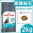 【クーポン配布中!】 ロイヤルカナン 猫 FCN ユリナリー...