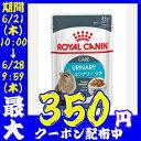 【条件クリアでポイント6倍】ロイヤルカナン 猫 FHN ウェ...