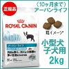 【ロイヤルカナン】アーバンライフジュニア2kg[ドッグフードドライ子犬パピー幼犬10ヶ月までお出かけストレス外出][AA]【D】3182550849739