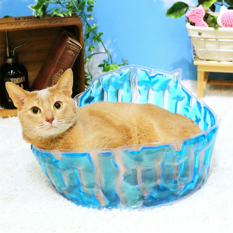 【クーポン配布中!】 猫大満足 ひんやりジェルプール猫 マット ベッド ジェル 夏用 クール ひんやり ペット用品 ひんやりグッズ 暑さ対策