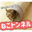 【予約】カシャカシャ キャットトンネル 猫 トンネル ネコ ねこ おもちゃ 【D】 楽天【2019aw】 その1