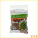 【猫草 犬 栽培】Green labo(グリーンラボ) 犬と猫が好きな草の栽培用土 3L【TC】[AA] 楽天 その1