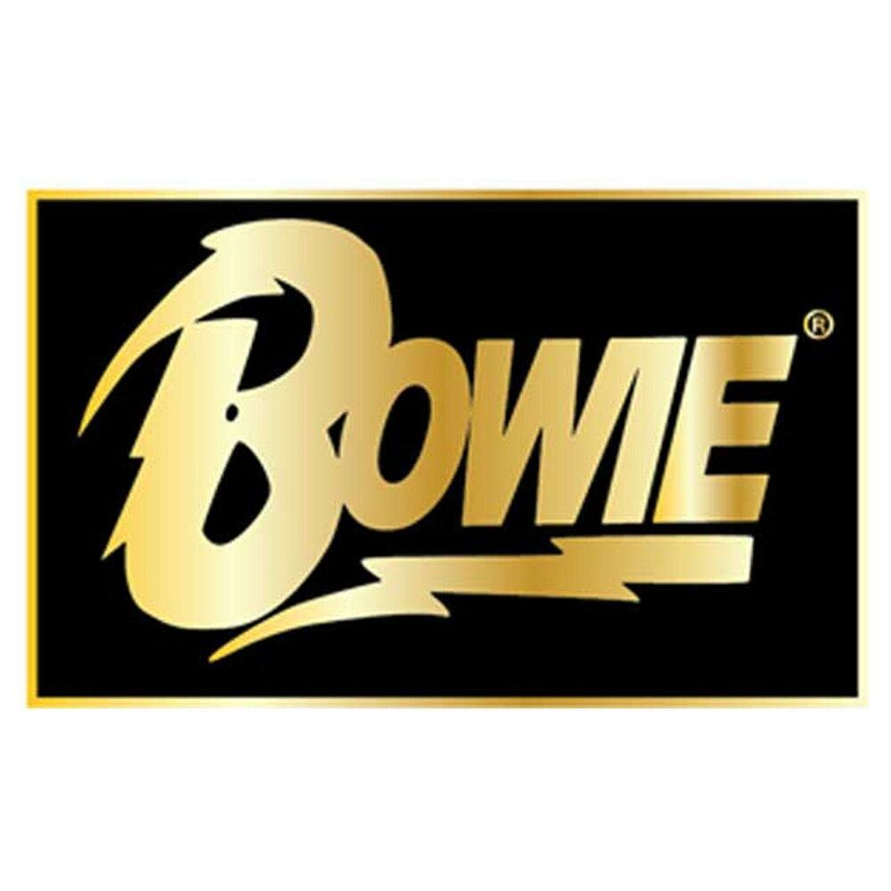 男女兼用アクセサリー, その他 DAVID BOWIE (BOWIE ) - PIN