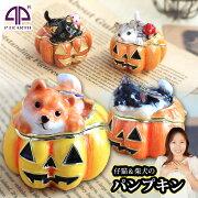 パンプキン ジュエリー ボックス ハロウィン かぼちゃ ピィアース プレゼント